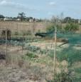 foto 4 - Montefalco terreno agricolo edificabile a Perugia in Vendita