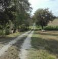 foto 3 - Montefalco terreno agricolo edificabile a Perugia in Vendita