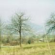foto 1 - Prignano sulla Secchia terreno a Modena in Vendita