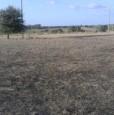foto 1 - Olmedo terreno agricolo a Sassari in Vendita