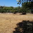 foto 2 - Pomezia terreno con rustico a Roma in Vendita