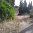 foto 8 - Olmedo strada vecchia per Sassari terreno agricolo a Sassari in Vendita