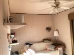 Annuncio affitto Trieste appartamento ammobiliato con terrazzo