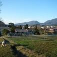 foto 5 - Lucca antica villa a Lucca in Vendita