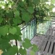 foto 2 - Cavedine casa con vista sulle dolomiti a Trento in Vendita