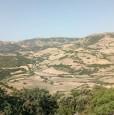 foto 1 - Osilo terreno agricolo a Sassari in Vendita