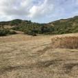 foto 0 - Osilo terreno agricolo a Sassari in Vendita