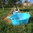 foto 8 - Pitigliano casale storico immerso nel verde a Grosseto in Vendita