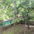foto 5 - Loano bilocale con doppio balcone e giardino a Savona in Vendita