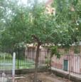 foto 2 - Loano bilocale con doppio balcone e giardino a Savona in Vendita