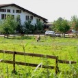 foto 0 - Torbole Casaglia appartamenti ammobiliati a Brescia in Affitto