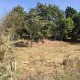foto 1 - Terreno situato a Tuoro sul Trasimeno a Perugia in Vendita