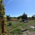 foto 3 - Avola in zona periferica appezzamento terriero a Siracusa in Vendita