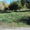 foto 0 - Fumone terreno agricolo olivato a Frosinone in Vendita
