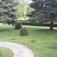 foto 9 - Borgo Val di Taro frazione di Brunelli villa a Parma in Vendita