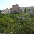 foto 3 - San Vito Lo Capo bilocale rimodernato a Trapani in Affitto