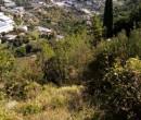 Annuncio vendita Sanremo terreno a terrazze