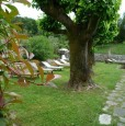 foto 19 - Lucca antica villa ristrutturata a Lucca in Affitto