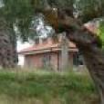foto 4 - Castellalto villa bifamiliare a Teramo in Vendita