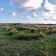 foto 2 - Castelvetrano terreno con vista sulla diga Delia a Trapani in Vendita