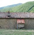 foto 26 - Coreglia Antelminelli struttura con terreno a Lucca in Vendita
