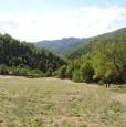 foto 24 - Coreglia Antelminelli struttura con terreno a Lucca in Vendita