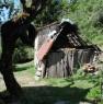 foto 3 - Coreglia Antelminelli struttura con terreno a Lucca in Vendita
