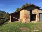 Annuncio vendita Castelfiorentino casa colonica