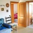 foto 0 - Pescara camera singola con un posto letto a Pescara in Affitto