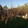 foto 5 - Brindisi villa con porticato a Brindisi in Vendita