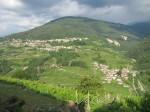 Annuncio vendita In valle di Cembra a Segonzano terreno edificabile