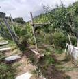 foto 19 - Carrara in località Fossola terreno agricolo a Massa-Carrara in Vendita