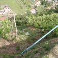 foto 16 - Carrara in località Fossola terreno agricolo a Massa-Carrara in Vendita