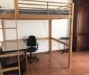 Annuncio affitto Bologna spaziose camere luminose ad uso singola