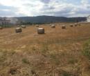 Annuncio vendita Terreno edificabile sito in Mirto-Crosia