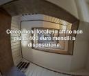Annuncio affitto Milano ragazza lavoratrice cerco monolocale