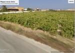 Annuncio vendita Petrosino terreno coltivato