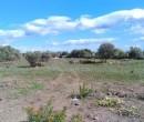 Annuncio vendita Orosei terreno edificabile