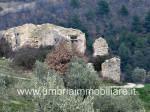 Annuncio vendita Spoleto Montemartano azienda agricola