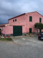 Annuncio vendita Magliano in Toscana azienda agricola