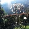 foto 5 - San Pellegrino Val Brembilla villetta a Bergamo in Vendita