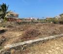 Annuncio vendita Salina del Rey terreni