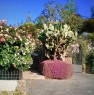 foto 72 - Cerveteri villa ecologica con ampio parco a Roma in Vendita