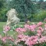 foto 52 - Cerveteri villa ecologica con ampio parco a Roma in Vendita