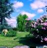 foto 50 - Cerveteri villa ecologica con ampio parco a Roma in Vendita