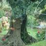foto 7 - Cerveteri villa ecologica con ampio parco a Roma in Vendita