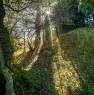 foto 5 - Cerveteri villa ecologica con ampio parco a Roma in Vendita