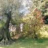 foto 3 - Cerveteri villa ecologica con ampio parco a Roma in Vendita