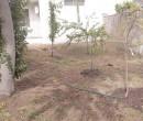Annuncio affitto Vercelli terreno uso agricolo ad uso orto