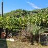 foto 7 - Vicchio ex casa colonica a Firenze in Vendita